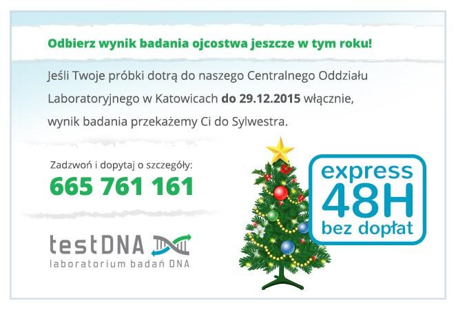 testDNA_popup_świąteczny
