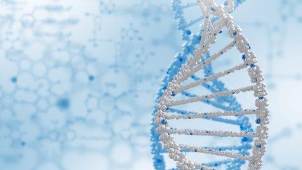 profil genetyczny definicja