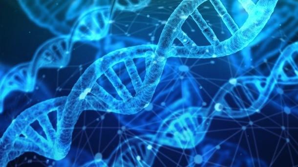 badania genetyczne, jakie badania genetyczne można zrobić, czy warto robić badania genetyczne, ile kosztują badania genetyczne